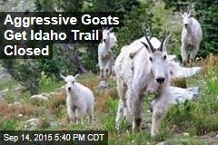Aggressive Goats Get Idaho Trail Closed