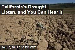 California's Drought: Listen, and You Can Hear It
