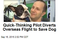 Quick-Thinking Pilot Diverts Overseas Flight to Save Dog