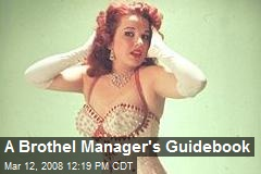 A Brothel Manager's Guidebook
