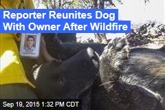 Reporter Reunites Dog With Owner After Wildfire