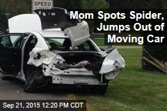 Mom Spots Spider, Jumps Out of Moving Car