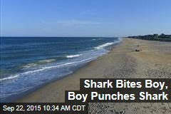 Shark Bites Boy, Boy Punches Shark