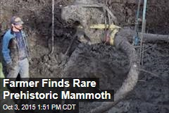 Farmer Finds Rare Prehistoric Mammoth