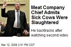 Meat Company Chief Admits Sick Cows Were Slaughtered