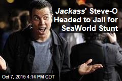 Jackass ' Steve-O Headed to Jail for SeaWorld Stunt
