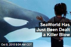 SeaWorld Has Just Been Dealt a Killer Blow