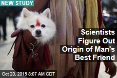 Scientists Figure Out Origin of Man's Best Friend