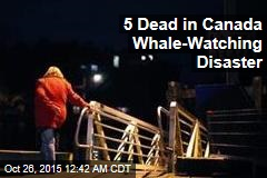 4 Dead in Canada Whale-Watching Disaster