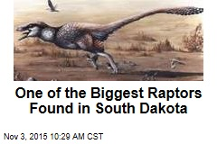 One of the Biggest Raptors Found in South Dakota