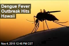 Dengue Fever Outbreak Hits Hawaii