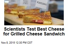Scientists Test Best Cheese for Grilled Cheese Sandwich