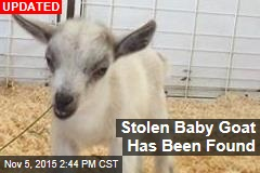 Baby Goat Stolen From Petting Zoo