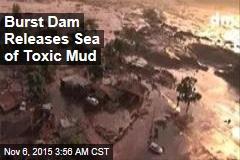 Burst Dam Releases Sea of Toxic Mud