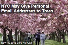 NYC May Give Personal Email Addresses to Trees