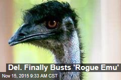 Del. Finally Busts 'Rogue Emu'