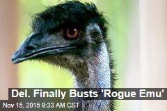 Del. Finally Busts 'Rogue Emu'