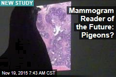 Pigeons Quickly Learn to Read Mammograms