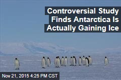 Controversial Study Finds Antarctica Is Actually Gaining Ice