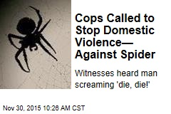 Cops Called to Stop Domestic Violence— Against Spider