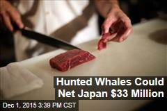 Hunted Whales Could Net Japan $33 Million