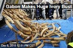 Gabon Makes Huge Ivory Bust