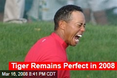 Tiger Remains Perfect in 2008