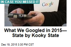 What We Googled in 2015—State by Kooky State