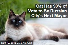 Cat Has 90% of Vote to Be Russian City's Next Mayor