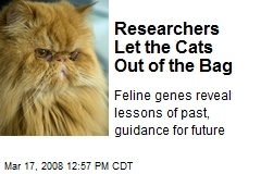 Researchers Let the Cats Out of the Bag