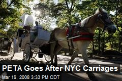 PETA Goes After NYC Carriages