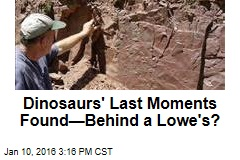 Only 'Dinosaur Extinction Site' Is Behind a Lowe's