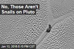 No, Those Aren't Snails on Pluto