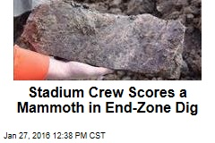 Stadium Crew Scores a Mammoth in End-Zone Dig