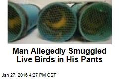 Man Allegedly Smuggled Live Birds in His Pants