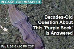 Decades-Old Question About This 'Purple Sock' Is Answered