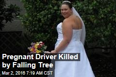 Pregnant Driver Killed by Falling Tree