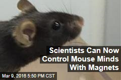 Scientists Can Now Control Mouse Minds With Magnets