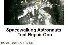 Spacewalking Astronauts Test Repair Goo