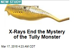 X-Rays End the Mystery of the Tully Monster