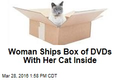 Woman Ships Box of DVDs With Her Cat Inside