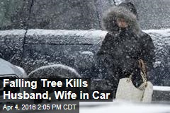 Falling Tree Kills Husband, Wife in Car