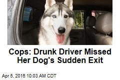 Cops: Drunk Driver Missed Her Dog's Sudden Exit