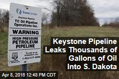 Keystone Pipeline Leaks Thousands of Gallons of Oil Into S. Dakota