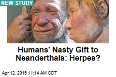 Humans' Nasty Gift to Neanderthals: Herpes?