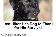 Lost Hiker Has Dog to Thank for His Survival