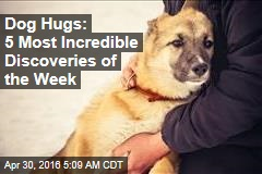 Dog Hugs: 5 Most Incredible Discoveries of the Week