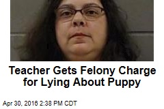 Teacher Gets Felony Charge for Lying About Puppy