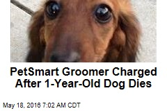PetSmart Groomer Charged After 1-Year-Old Dog Dies