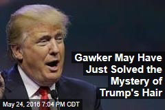 Gawker May Have Just Solved the Mystery of Trump's Hair